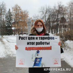 Пикеты против власти Путина-02