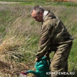 Депутат Иванов – посадка деревьев-002