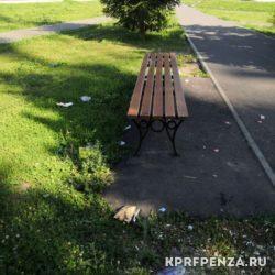 Работа депутата Иванова – Лунино-010